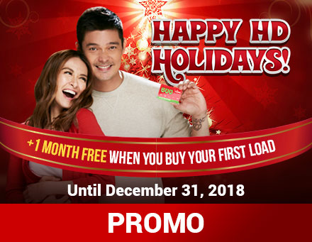 Cignal Prepaid Ultimate HD Kit / Box Promo